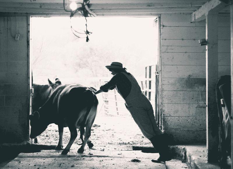 FarmHer project by Marji Guyler-Alaniz