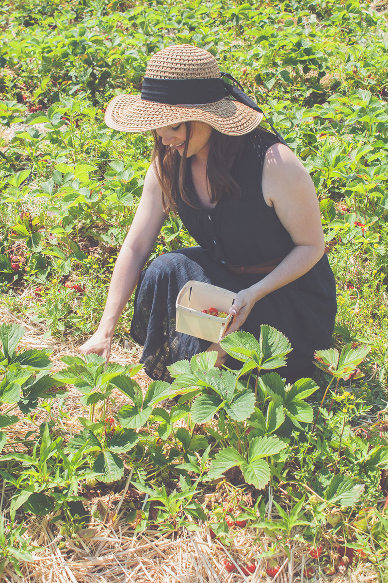Strawberry picking in a vintage dress and Target hat