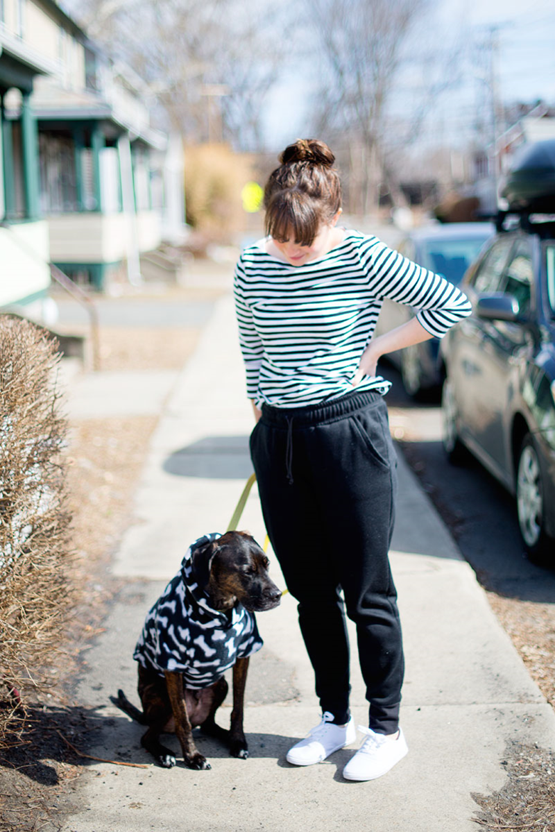 Sewing patterns: Dog hoodie and Hudson pants