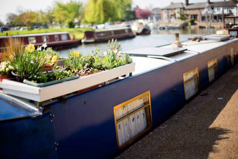 Houseboats in Ely, England