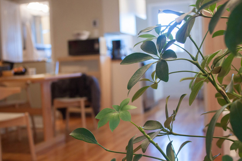Our Airbnb apartment in Montrèal
