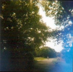 Light leak from a plastic Holga 120N camera