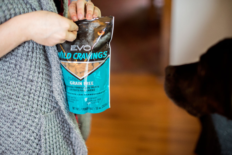 Wild Cravings dog treats