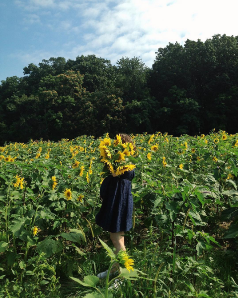Pregnant in a field of sunflowers