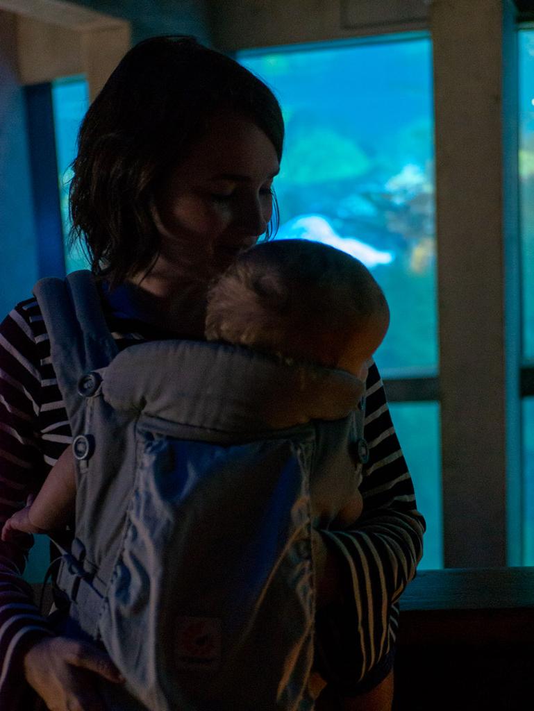 Baby in Ergo carrier at the aquarium