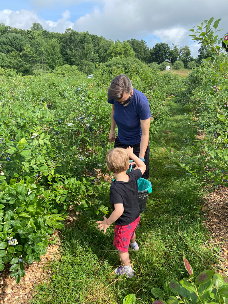 An androgynous parent and young child pick blueberries in a field. The child's face is not visible.