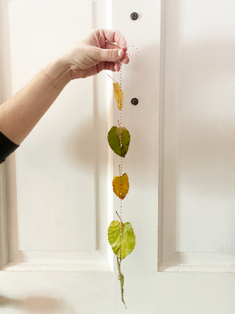 A white person's hand is holding up a garland made from yellow and green fall leaves in front of a white door. The leaves have been dipped in beeswax and are strung together using red and white striped baker's twine.