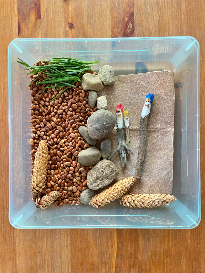A plastic bin filled with dried beans, sandpaper, grass, and pinecones organized neatly. There are also three sticks painted to look like gnomes.