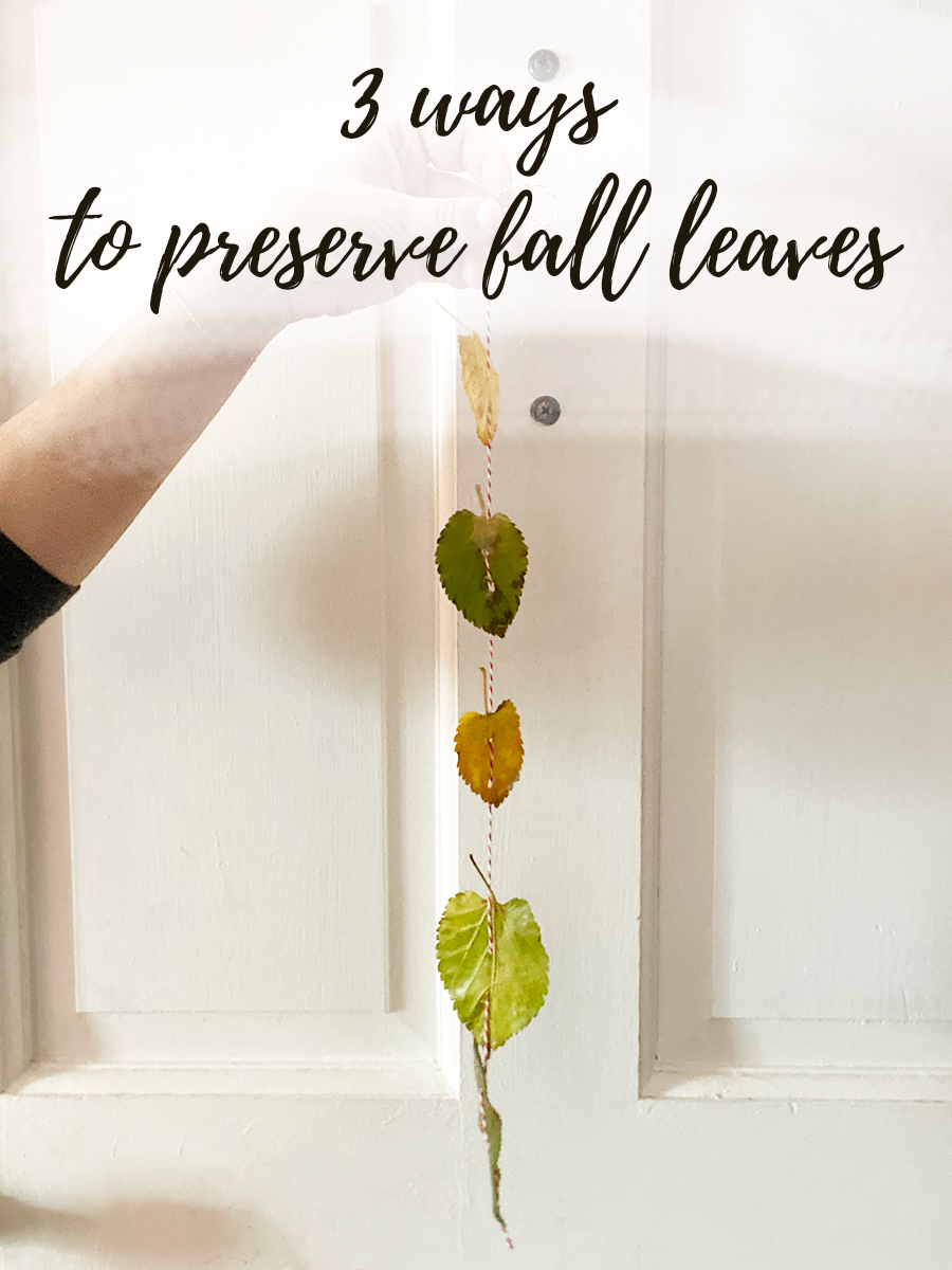 A white person's hand is dangling a garland made of fall leaves in front of a white door. The text 3 Ways to Preserve Fall Leaves is at the top of the image in handwritten cursive script.
